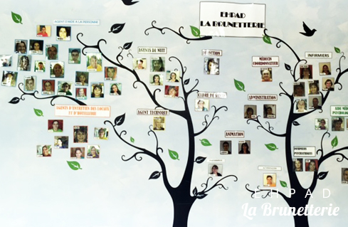 ehpad-arbre-genealogique