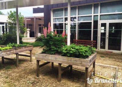 Le potager de l'ehpad - La Brunetterie