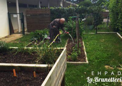 Le potager/jardin de l'ehpad - La Brunetterie