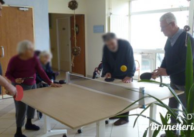 Animation tennis de table - La Brunetterie